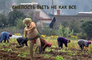 http://s6.uplds.ru/t/qfcHX.jpg